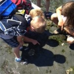 Burke examining marine life with his friends at summer camp