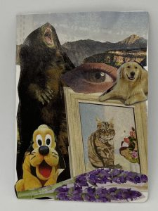 collage of animals with an eye in the center